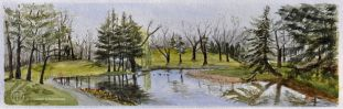 """FIRST Place with 37 votes! Roseland Water Hazard, Windsor, On. Watercolour Image 5 1/2"""" x 17 1/2"""" Framed 12 x 24 1/2 $275"""