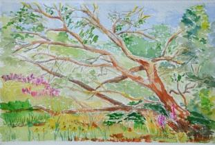 "I'm not Dead Yet, Dexter, Mi Plein air Festival quick paint 10 1/2 x 7 1/4 Watercolour on Arches Wood Frame & Mat 19 1/2"" x 16 1/2"" unframed $275. framed $350"